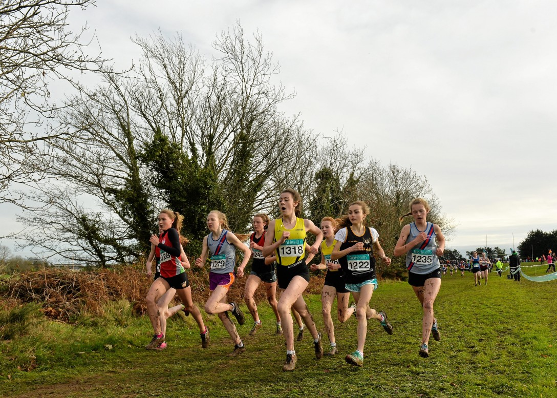 The Irish Life Health Novice and Juvenile Uneven Age XC Championships 2017
