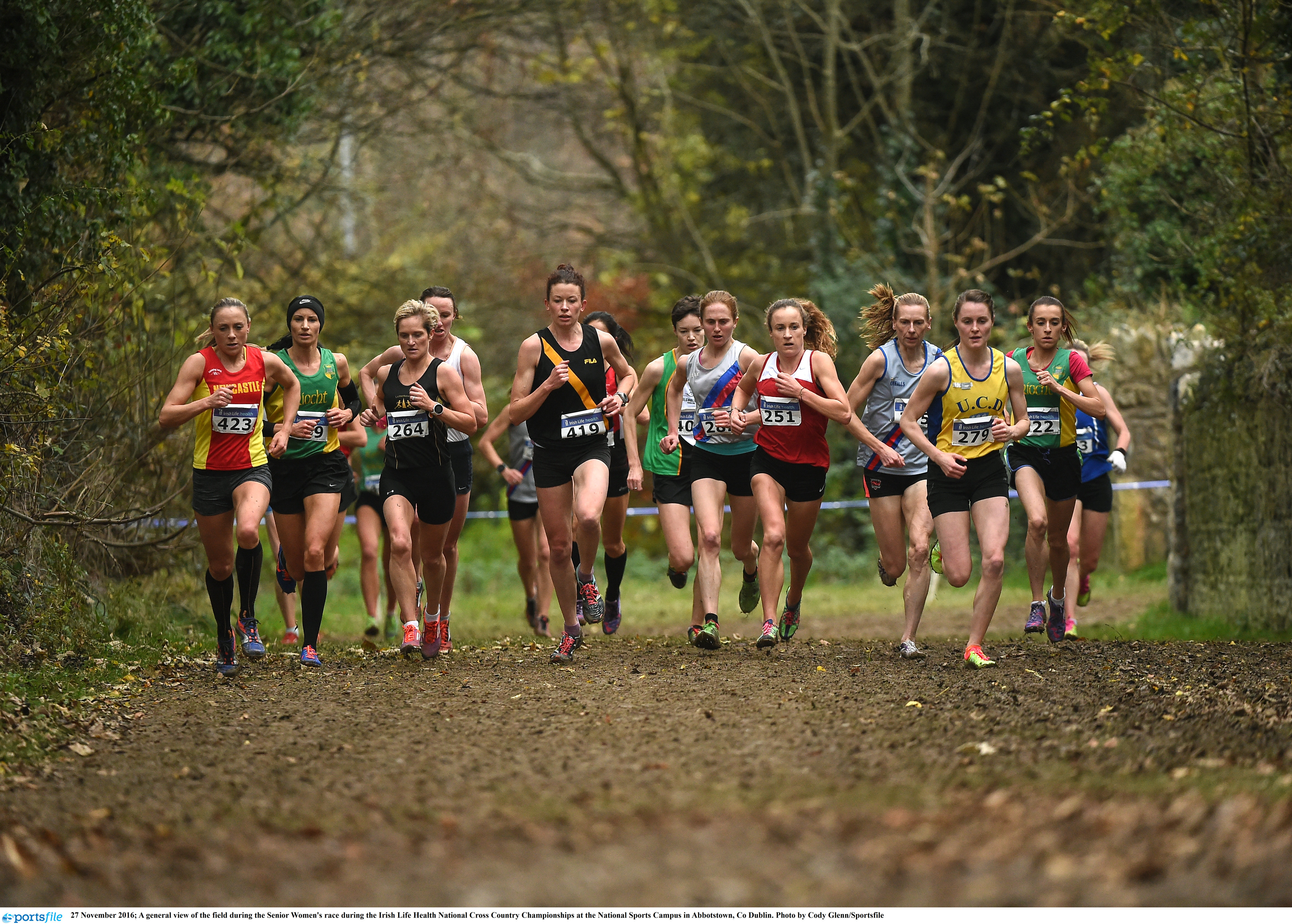 Application for regrading for the cross country season 2017-2018