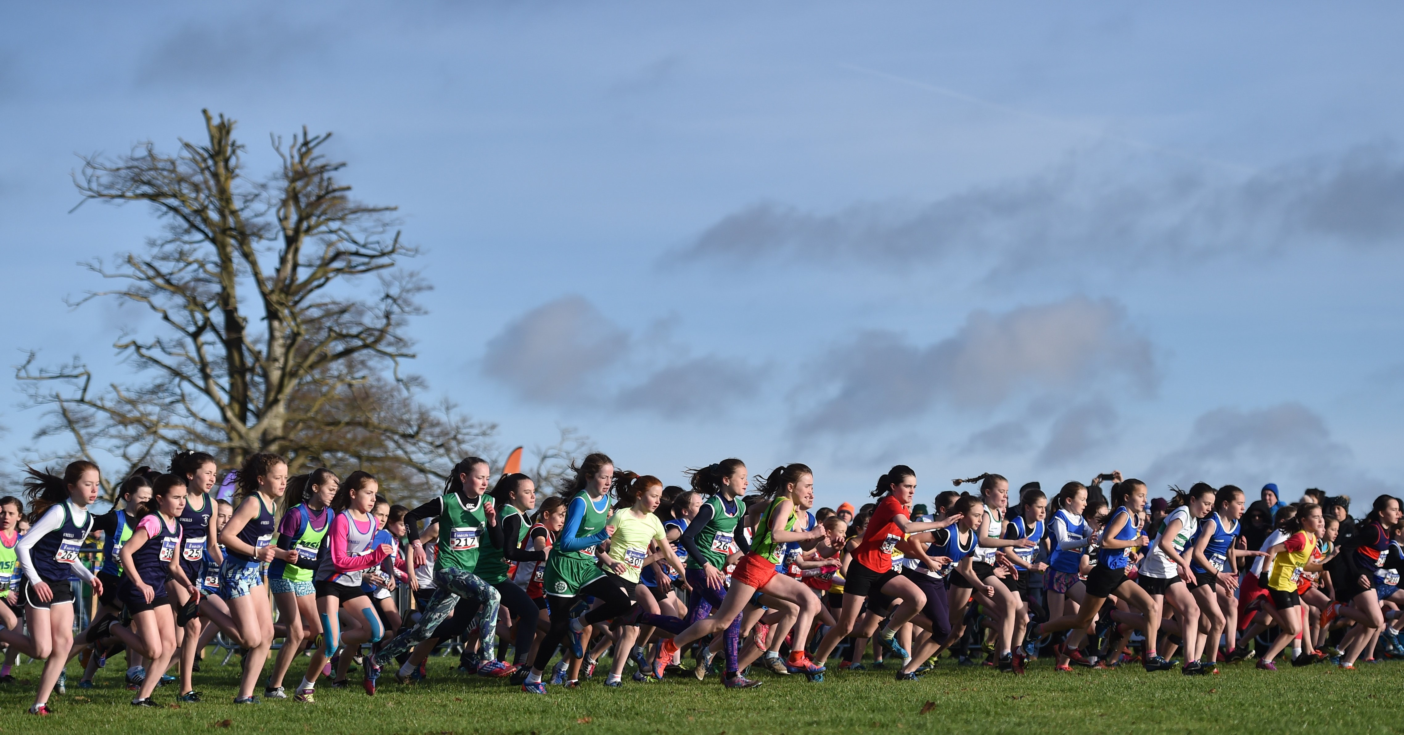 Provisional Entry List Even Age Cross Country Championships